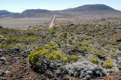 Road to Piton de la Fournaise volcano on La Reunion Stock Photography