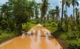 Road to Playa Rincon Puddle Stock Photo