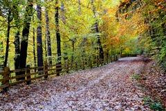 Road to Poiana Brasov Royalty Free Stock Photos