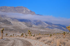 Road to racetrack playa Royalty Free Stock Image