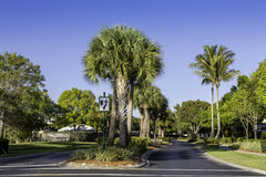 Road to community in Naples, Florida Royalty Free Stock Images