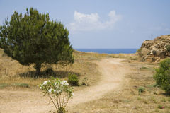 Road to the sea. Small path near with Mediterranean coast Royalty Free Stock Image