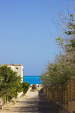 Road to the sea. The way to beach,trees beside road to beach,fine blue sea water Royalty Free Stock Images