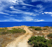 Road to sea. Summer scene with rut road to sea in nice day Stock Photography