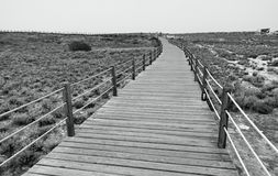 Road to the sea. Wooden walkway through the sand Royalty Free Stock Photo