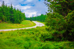 Road to Semenic Resort Royalty Free Stock Photos