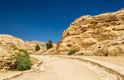 Road to the Siq at Petra Royalty Free Stock Images