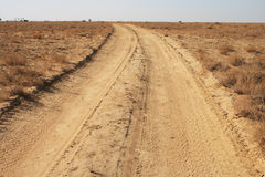 Road to the steppes. Stock Photos
