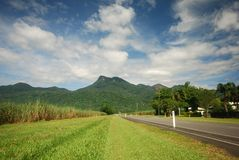 Road to Sugar Cane plantation Stock Image