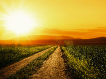 Road to sun. Stock Image