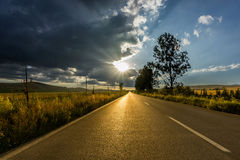 Road to the sunset. One summer day on the road which are heading towards the sunset royalty free stock photos