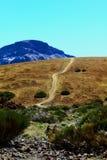 Road to Teide Stock Photos