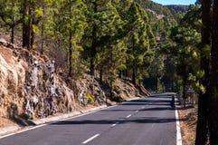Road to Teide volcano Royalty Free Stock Photo