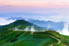 Road to top of misty hill at dawn Thailand Stock Images