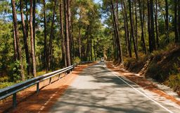 Road to Troodos royalty free stock photography
