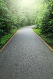 Road to tropical forest Royalty Free Stock Images