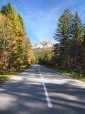 Road to Velky Rozsutec, Slovakia Stock Photos