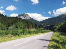 Road to Velky Rozsutec in summer. View of main road to Velky Rozsutec mountain peak (alt. 1,609 meters) located in the north part Mala Fatra mountain range in Stock Photo