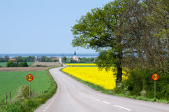 Road to the village at spring Royalty Free Stock Photos