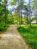 Road to the village, sunny day, tranquility royalty free stock images