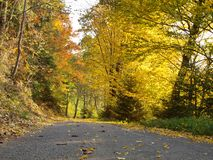 Road to the village, warm and sweet autumn royalty free stock photography