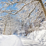 Road to Winter Wonderland Stock Image
