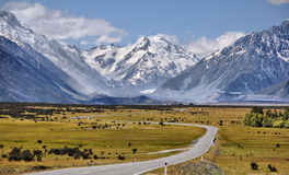Road toaward Mount Cook Royalty Free Stock Image