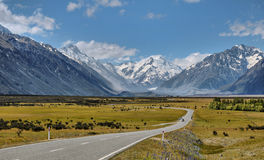Road toward Mount Cook Royalty Free Stock Photo