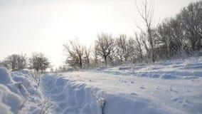 Road trail in the snow sunlight winter landscape beautiful golf snowing sun glare nature stock video
