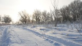 Road trail in the snow winter landscape beautiful golf snowing sun glare nature sunlight stock video footage