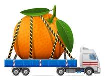 Road transportation of fresh orange fruit Royalty Free Stock Photo