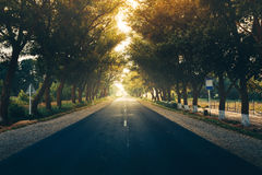 Road Travel Journey Nature Scenic Concept Royalty Free Stock Images