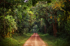 The Road Less Traveled. A dirt road in Uganda, Africa Royalty Free Stock Images