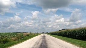 Road less traveled. This is a road in Indiana bordered by cornfields Stock Photo