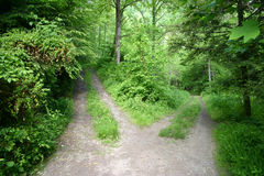 Road Less Traveled Royalty Free Stock Photography