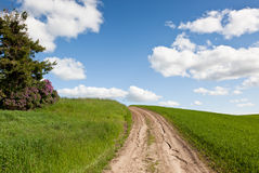 The Road Less Traveled Stock Photo