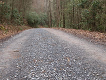 Country Road traveled. Gravel road going through forest Stock Photos