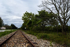 The Road Less Travelled. A railway in Addo in the Eastern Province, South Africa Stock Photography