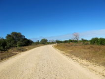 The road less travelled. A road leading north from Kilindoni on Mafia-Island Royalty Free Stock Photos