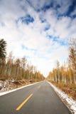 Road between tree Stock Images