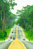 Road with tree in Krabi , Thailand.  royalty free stock photos