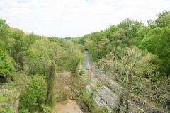 Road between tree. Scenery of road by creek between tree Royalty Free Stock Photos