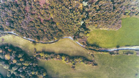 Road Between Trees Aerial Shot Stock Photography