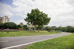 Xindian Creek bicycle lanes. The road with the trees and the grass in the park stock photo