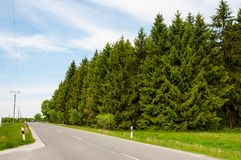 Road in Harz in Germany Royalty Free Stock Image