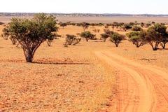 Kalahari Namibia Stock Images