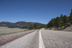 Road Trip. Highway through forest in lower angle Stock Photography