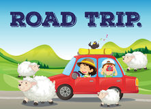 Road trip. In countryside with farm and sheeps background Royalty Free Stock Photos