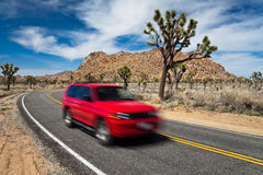Road Trip in Joshua Tree Royalty Free Stock Photos