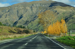 Road trip in New Zealand Royalty Free Stock Images